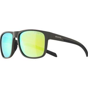 Alpina Sports NACAN III   - Unisex  slnečné okuliare