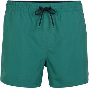 O'Neill PM CALI PANEL SHORTS  S - Pánske šortky do vody